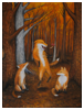 Three Foxes 2016